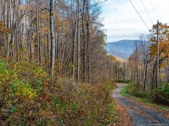 Lot 15 Mother Nature Drive, Burnsville, NC 28714 (#3688393) :: Cloninger Properties