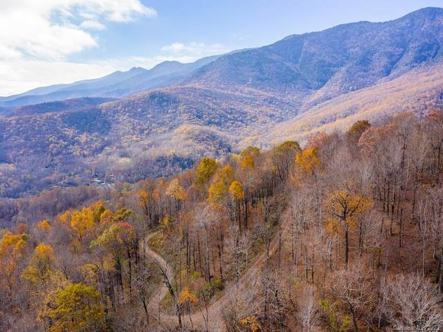 Lot 17 Mother Nature Drive, Burnsville, NC 28714 (#3688421) :: Cloninger Properties
