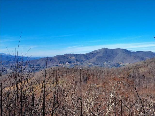 759 Cattail Lane #15, Waynesville, NC 28786 (#3688463) :: Home and Key Realty
