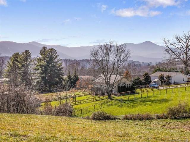 99999 N Bear Creek Road, Asheville, NC 28806 (#3688485) :: Love Real Estate NC/SC
