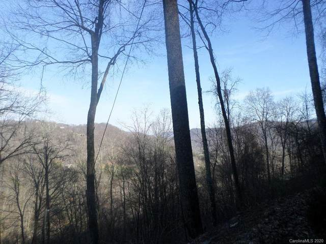 29 Appaloosa Trail, Waynesville, NC 28785 (#3689209) :: Keller Williams Professionals