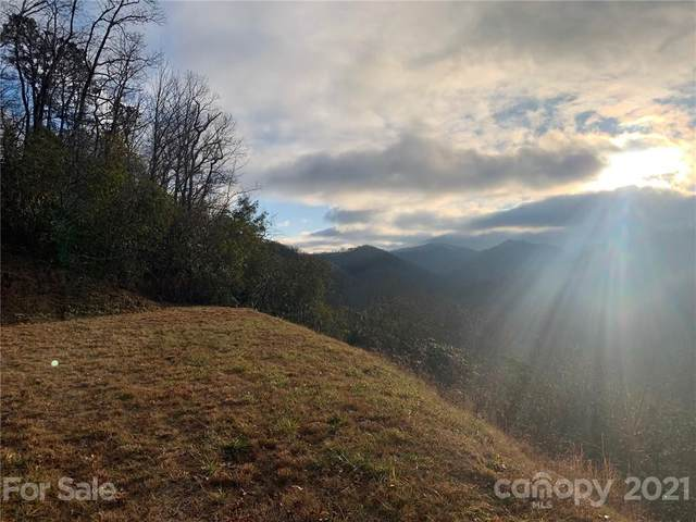 Lot 18 on Pegasus Way #18, Bryson City, NC 28781 (#3689932) :: DK Professionals