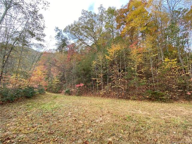0000 Jenkins Branch Road, Bryson City, NC 28713 (#3690305) :: Home and Key Realty