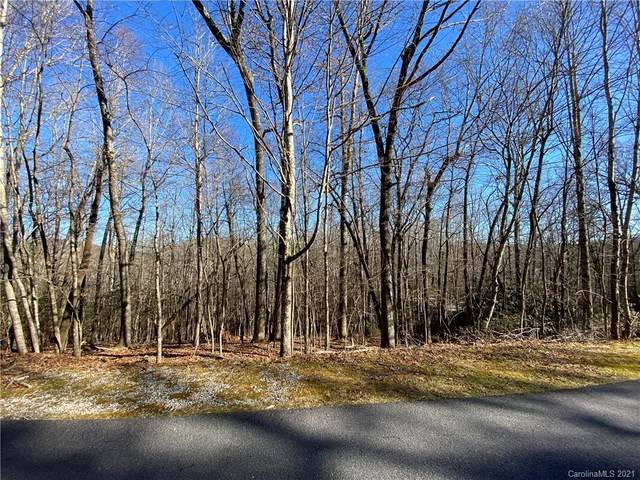 TBD Utsonati Lane 98A, Brevard, NC 28712 (#3690380) :: Scarlett Property Group