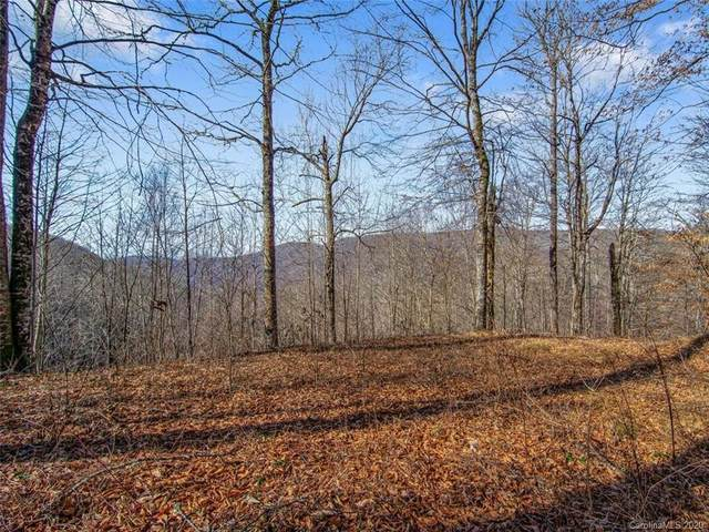00000 Spruce Flats Road Lt 24, Maggie Valley, NC 28751 (#3691564) :: Willow Oak, REALTORS®