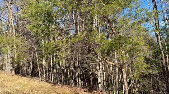 61 South Ridge Drive, Hendersonville, NC 28739 (#3691601) :: Johnson Property Group - Keller Williams