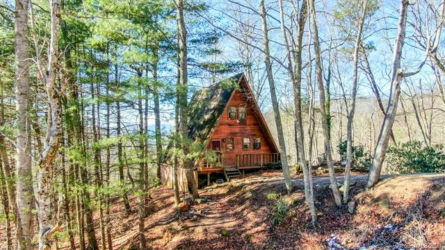 1804 Water Wheel Cove, Clyde, NC 28721 (#3693947) :: Keller Williams Professionals