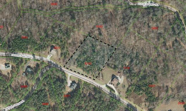 000 Hidden Lake Parkway #50, Nebo, NC 28761 (#3694623) :: Home and Key Realty