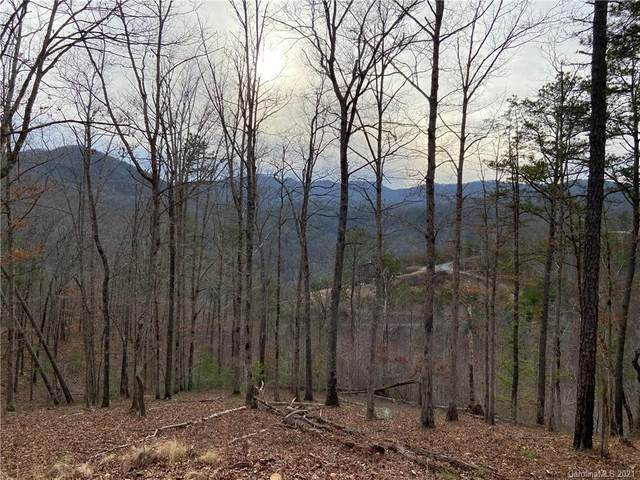 567 Wild River Run #66, Marshall, NC 28753 (#3694945) :: Stephen Cooley Real Estate Group