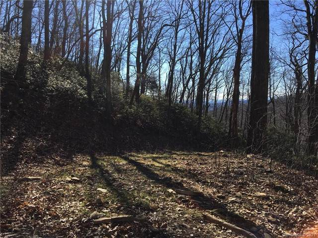 TBD Red Oak Forest Road, Fairview, NC 28730 (#3695176) :: MOVE Asheville Realty