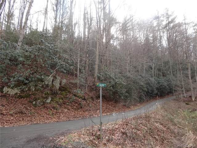 000 NW Fisher Branch Road NW, Marshall, NC 28753 (#3697070) :: DK Professionals Realty Lake Lure Inc.