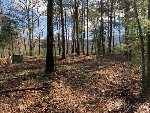 408 Falling Leaves Lane, Hendersonville, NC 28792 (#3697641) :: Scarlett Property Group