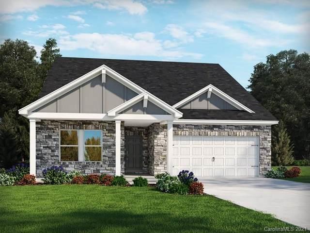 2419 Riparian Way, Denver, NC 28037 (#3697715) :: Rhonda Wood Realty Group