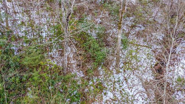 99999 Bird Creek Estates Road, Black Mountain, NC 28711 (#3697964) :: Keller Williams Professionals