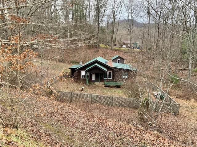 7805 Double Island Road #0064, Green Mountain, NC 28740 (#3697991) :: LePage Johnson Realty Group, LLC