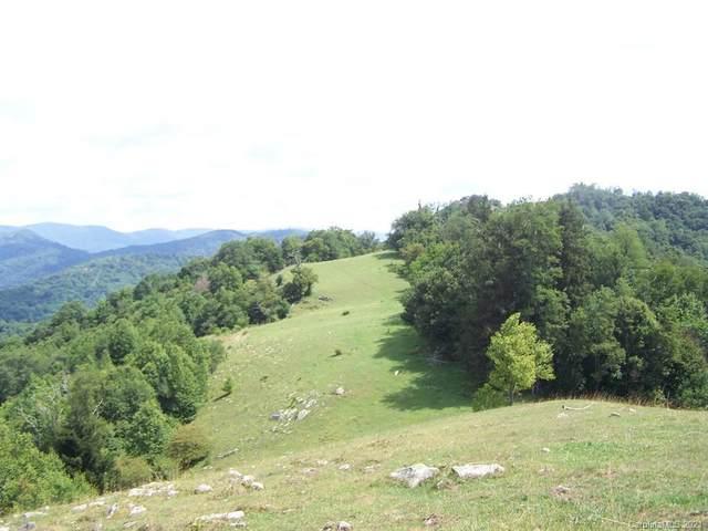 000 Crabtree Mountain Road, Canton, NC 28716 (#3698449) :: Exit Realty Vistas