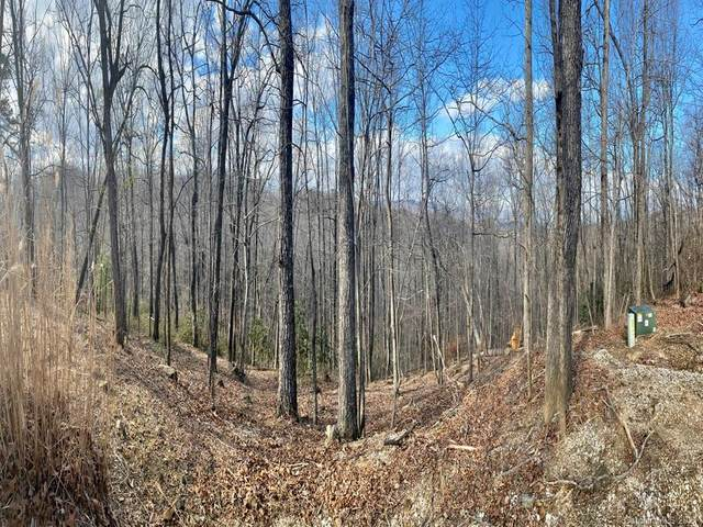 LOT 44 Table Rock Road, Saluda, NC 28773 (#3698620) :: TeamHeidi®
