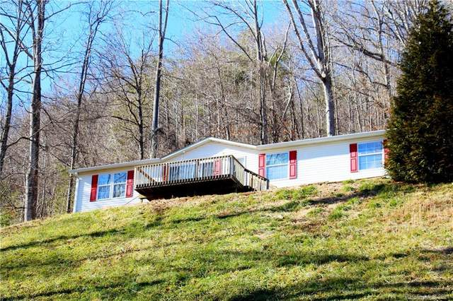 150 Dryid Hill Road, Swannanoa, NC 28778 (#3698979) :: High Performance Real Estate Advisors