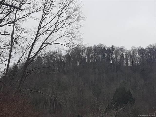 TBD Big Pine Road, Marshall, NC 28753 (#3699105) :: DK Professionals Realty Lake Lure Inc.