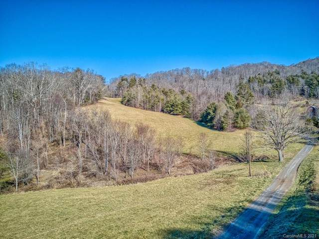 00 Winding Branch Trail, Clyde, NC 28721 (#3699132) :: Robert Greene Real Estate, Inc.