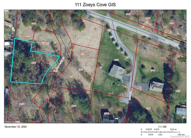 111 Zoeys Cove Road, Alexander, NC 28701 (#3699666) :: LKN Elite Realty Group | eXp Realty
