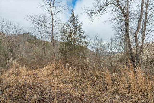 TBD Twin Oaks Estate 1-2, Sylva, NC 28779 (#3699917) :: Home and Key Realty