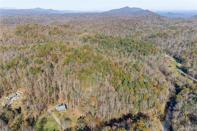 0000 W Fork Creek Road, Saluda, NC 28773 (#3700041) :: DK Professionals Realty Lake Lure Inc.