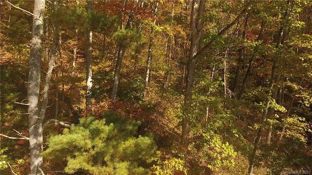 999 Pinecroft Road, Asheville, NC 28804 (#3700064) :: DK Professionals Realty Lake Lure Inc.