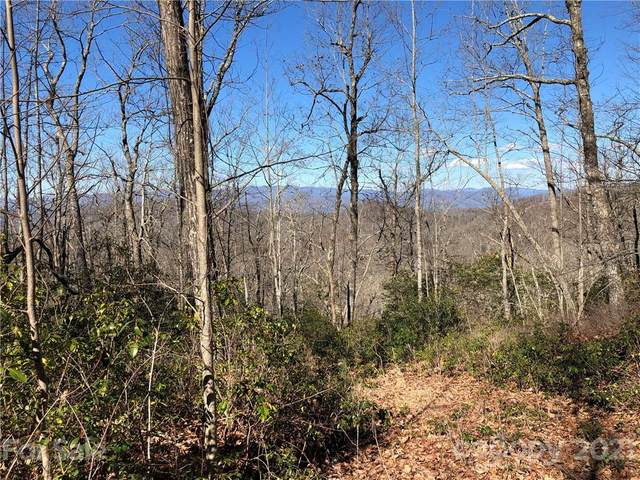 65 Indian Camp Mountain Road #65, Rosman, NC 28772 (#3700593) :: Willow Oak, REALTORS®