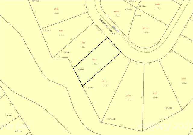 287 Salisbury Drive 942, 928, 927, Troy, NC 27371 (#3701846) :: Puma & Associates Realty Inc.