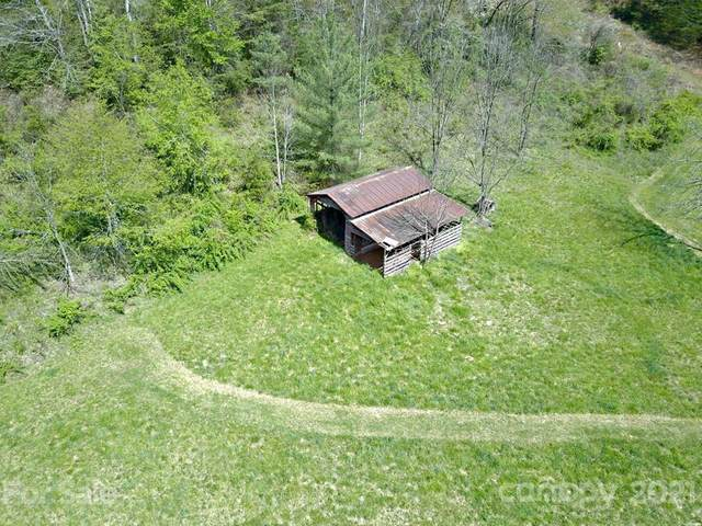 1 Country Knoll Drive, Sylva, NC 28779 (#3701899) :: Stephen Cooley Real Estate Group
