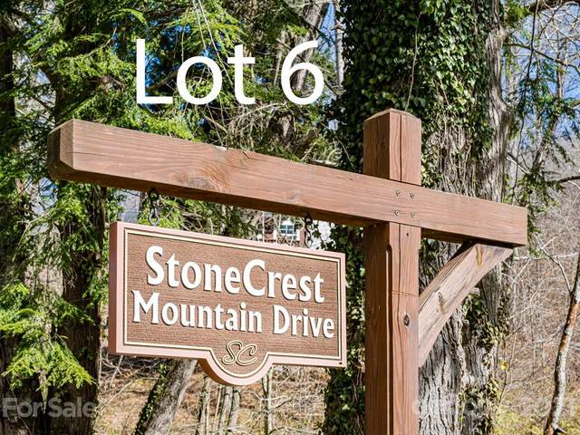99999 Stone Crest Mountain Drive 6 & 7, Black Mountain, NC 28711 (MLS #3701961) :: RE/MAX Journey