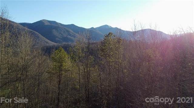 00 Basswood Cove #20, Maggie Valley, NC 28786 (#3702158) :: Willow Oak, REALTORS®