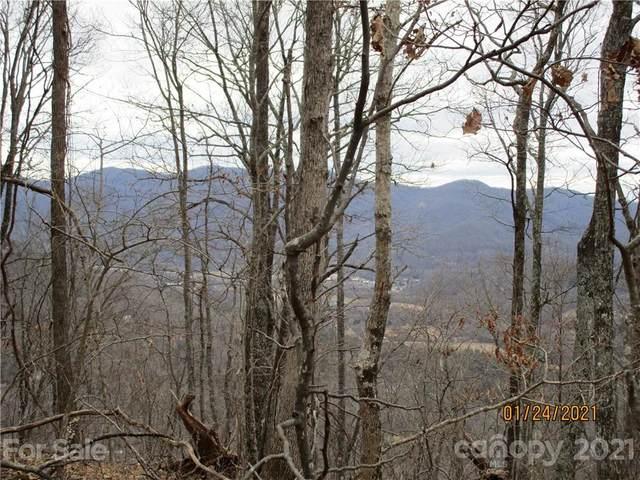 00000 Bee Tree Road, Swannanoa, NC 28778 (#3702226) :: Keller Williams Professionals