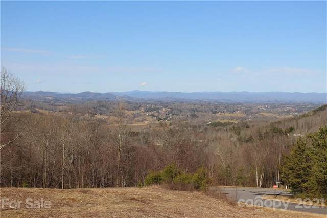 106 View Ridge Parkway, Leicester, NC 28748 (#3702340) :: Stephen Cooley Real Estate Group