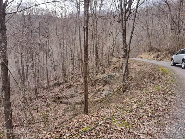Land off High Spring Trail, Waynesville, NC 28786 (#3702515) :: Stephen Cooley Real Estate Group