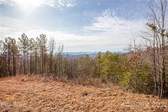 3421 South Peak Lane #64, Morganton, NC 28655 (#3702591) :: TeamHeidi®