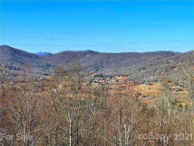 14 Deer Grass Court #75, Arden, NC 28704 (#3702598) :: MOVE Asheville Realty