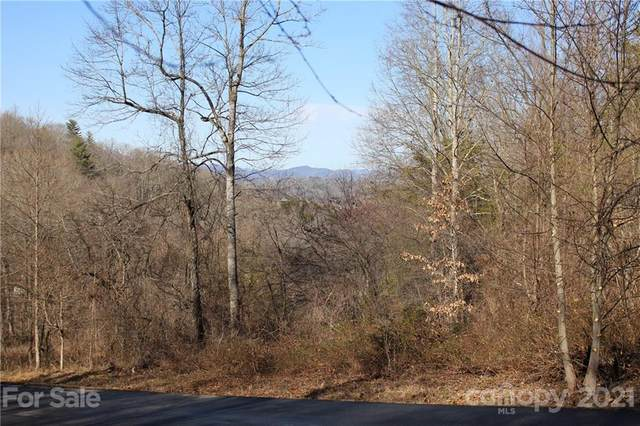 41 View Ridge Parkway, Leicester, NC 28748 (#3702953) :: Keller Williams Professionals