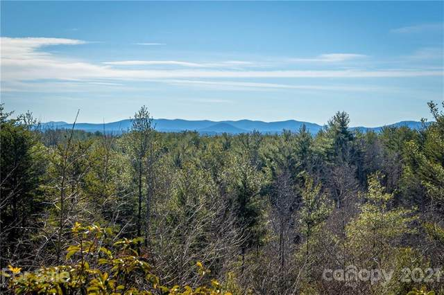 9040 Shortoff View Terrace #45, Nebo, NC 28761 (#3703126) :: Mossy Oak Properties Land and Luxury