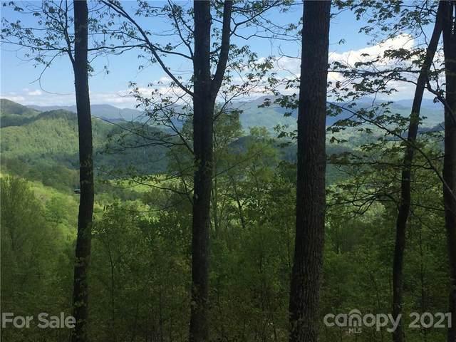 102 Amber Sky Drive, Waynesville, NC 28785 (#3703226) :: TeamHeidi®