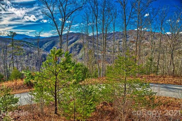 Lot 133 Bear River Lodge Trail W #133, Marshall, NC 28753 (#3703383) :: LePage Johnson Realty Group, LLC