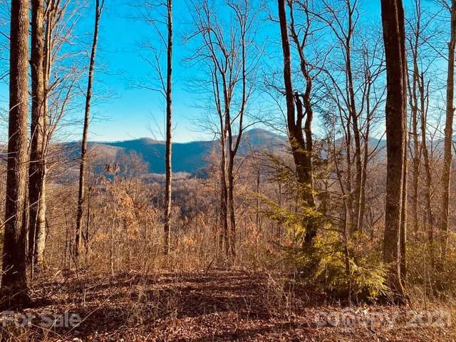 TBD Mountain Watch Drive #10, Waynesville, NC 28786 (#3703674) :: Willow Oak, REALTORS®
