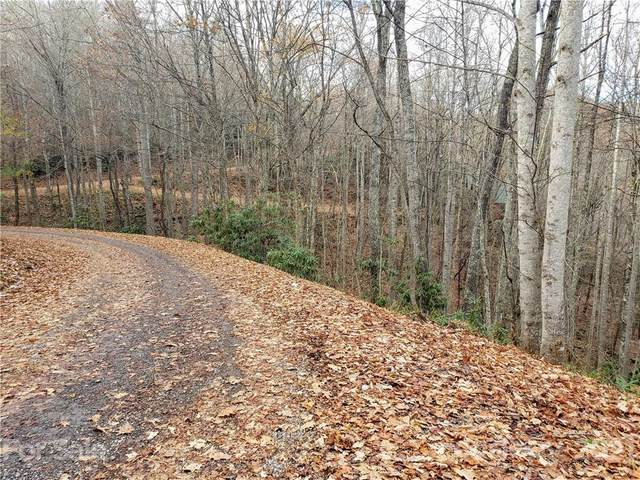 00 Connies Cove #19, Waynesville, NC 28785 (#3703907) :: Bigach2Follow with Keller Williams Realty