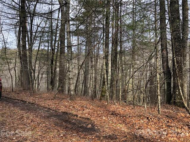 Lot #12 Wellspring Way #12, Brevard, NC 28712 (#3704142) :: High Performance Real Estate Advisors