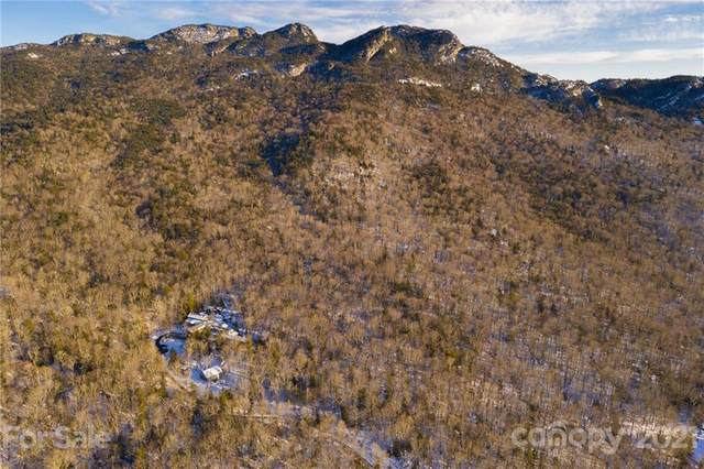 1453 Mountain Springs Road T1,2A,2B,3,4, Linville, NC 28646 (#3704364) :: Odell Realty
