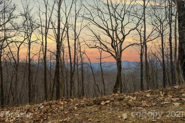 385 High Hickory Trail #50, Swannanoa, NC 28778 (#3704679) :: High Performance Real Estate Advisors