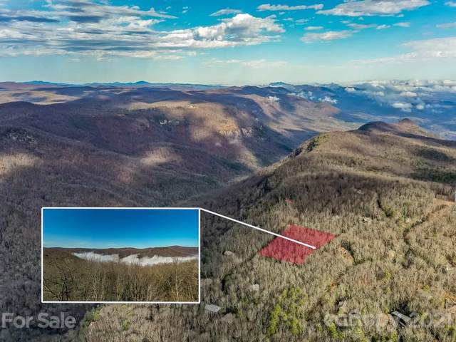 127 Conifer Falls Road, Cleveland, SC 29635 (#3704770) :: Mossy Oak Properties Land and Luxury