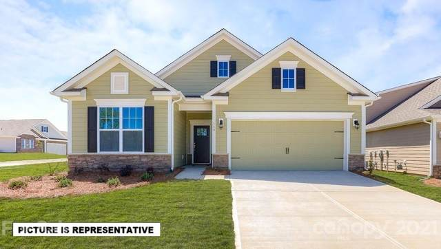 4390 Riverton Loop, Denver, NC 28037 (#3705731) :: Rhonda Wood Realty Group