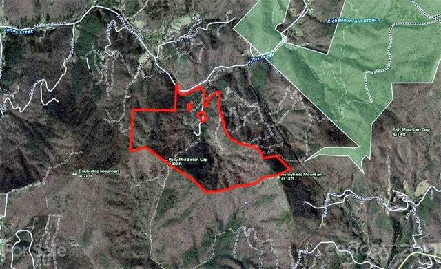 158 Rugged Mountain Drive, Cullowhee, NC 28723 (#3706016) :: LePage Johnson Realty Group, LLC